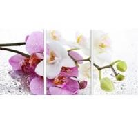 Набор алмазной вышивки Орхидея. Триптих (три картины). 75 х 35 см (арт. FS312)