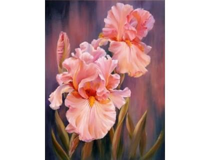 Купить Алмазная вышивка Нежные цветы 40 х 30 см (арт. FS313)