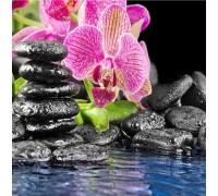 Алмазная вышивка Розовая орхидея 35 х 35 см (арт. FS351)