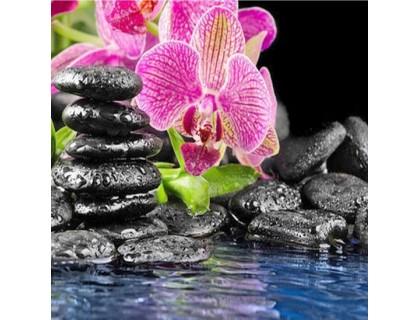 Купить Алмазная вышивка Розовая орхидея 35 х 35 см (арт. FS351)
