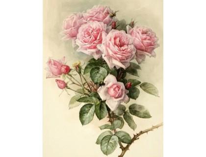 Купить Алмазна вишивка мозаїка Шипи та рози 45 х 30 см (арт. FS890) квіти