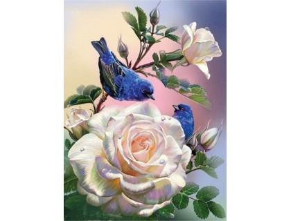 Купить Алмазная вышивка квадратные камни 40 х 30 см Райская птица (арт. FS868)