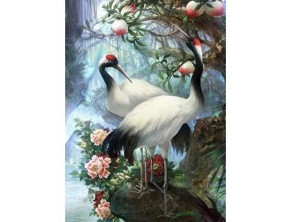 Купить Алмазная вышивка Нежные лепестки цветов 40 х 50 см (арт. FS869)