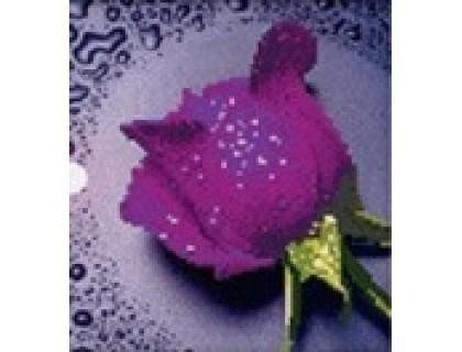 Купить Набор алмазной вышивки Фиолетовая роза 22 х 22 см (арт. PR064) частичная выкладка