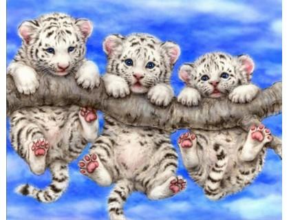 Купить Алмазная вышивка Тигрята 30*38 см (арт. FS007)