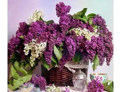 Купить Алмазная вышивка Цветы сирени 30 х 30 см (арт. FS356)
