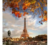 Набор алмазной вышивки DIY Солнечный Париж 30 х 30 см (арт. FR100)