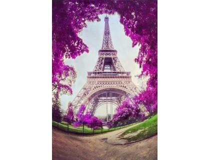 Купить Набор алмазной вышивки Париж в цвету 30 х 40 см (арт. FS517)