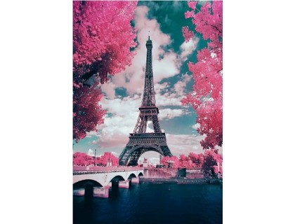 Купить Алмазная вышивка В глазах Париж  50 х 40 см (арт. FS686)