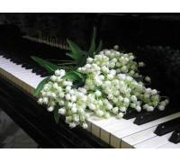 Алмазная выкладка Цветы на клавишах рояля 30 х 40 см (арт. FR097)