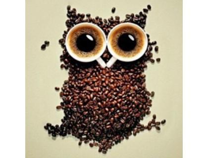 Купить Алмазная вышивка Сова с кофе 30 х 30 см (арт. FR144)