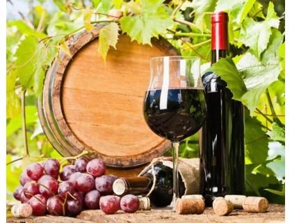 Купить Алмазная вышивка Красное вино 50 х 40 см (арт. FR518)
