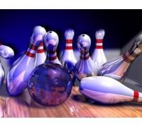 Алмазная вышивка квадратные камни 40 х 30 см Игра в боулинг с друзьями (арт. FS880)