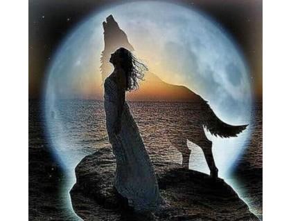 Купить Алмазная мозаика Девушка и волк при луне 30 х 30 см (арт. FR445) волки