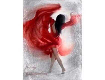 Купить Алмазная вышивка Страстный танец 30 х 40 см (арт. FS360)