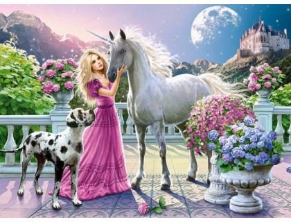 Купить Набор алмазной вышивки Принцесса с единорогом 40 х 30 см (арт. FS401)