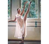 Алмазная вышивка Танец балерины 40 х 50 см (арт. FS780)