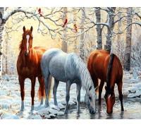 Алмазная вышивка без коробки MyArt Тройка лошадей 40 х 50 см (арт. MA477)