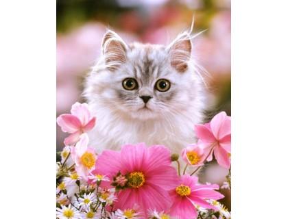 Купить Алмазная вышивка без коробки MyArt Ласковый котенок 40 х 50 см (арт. MA482)
