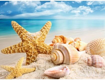 Купить Алмазная вышивка Подарок океана 30 х 40 см (арт. FR524) полная зашивка