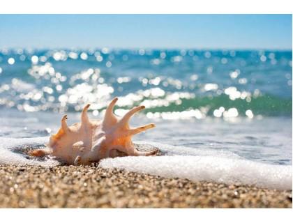 Купить Алмазная вышивка морская тематика Побережье 45 х 30 см (арт. FR545)