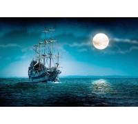 Набор алмазной мозаики Ночь в море 50 х 40 см (арт. FS273)