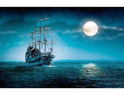 Купить Набор алмазной мозаики Ночь в море 50 х 40 см (арт. FS273)