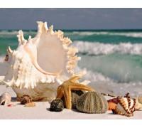 Комплект алмазной вышивки Ракушки у моря 30 х 40 см (арт. FS280)