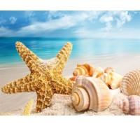Алмазная вышивка 40 х 30 см на подрамнике Пляж и ракушки (арт. TN998)