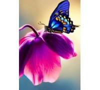 Алмазная вышивка 30 х 20 см на подрамнике Бабочка на цветке (арт. TN044)