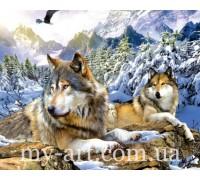 Алмазная вышивка на подрамнике 50 х 40 см Верные волки (арт. TN1019)
