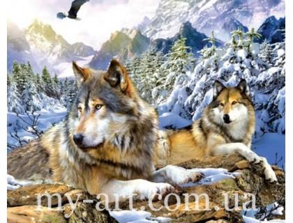 Купить Алмазная вышивка на подрамнике 50 х 40 см Верные волки (арт. TN1019)