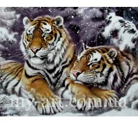 Алмазная вышивка на подрамнике 50 х 40 см Пара тигров в снегу (арт. TN1020)