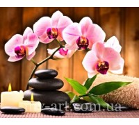 Алмазная вышивка на подрамнике 50 х 40 см Орхидея по феншую (арт. TN1025)