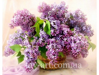 Купить Алмазная вышивка на подрамнике 50 х 40 см Сирень цветы лета (арт. TN136)
