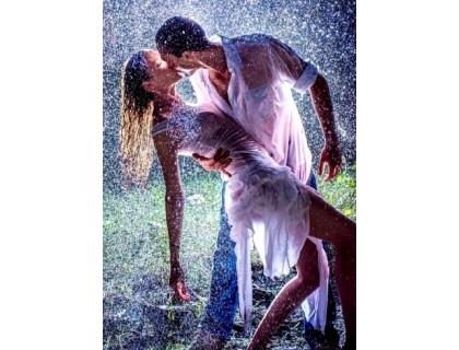 Купить Алмазная вышивка 50 х 40 см на подрамнике Танго под дождем (арт. TN266)