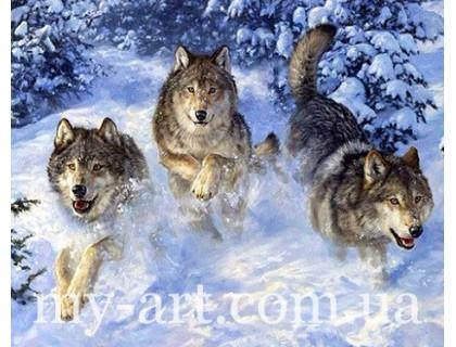 Купить Алмазная вышивка на подрамнике 50 х 40 см Стая волков в снегу (арт. TN403)