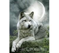 Алмазная вышивка 40 х 30 см на подрамнике Волк под луной (арт. TN503)