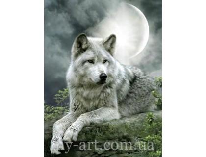 Купить Алмазная вышивка 40 х 30 см на подрамнике Волк под луной (арт. TN503)