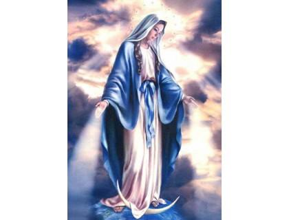 Купить Алмазная вышивка 40 х 50 см на подрамнике Икона Святой Девы Марии (арт. TN901)