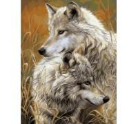 Алмазная вышивка 50 х 40 см на подрамнике Пара степных волков (арт. TN915)