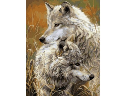 Купить Алмазная вышивка 50 х 40 см на подрамнике Пара степных волков (арт. TN915)