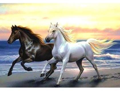 Купить Алмазная вышивка 50 х 40 см на подрамнике Лошади скачут с морским ветром (арт. TN930)