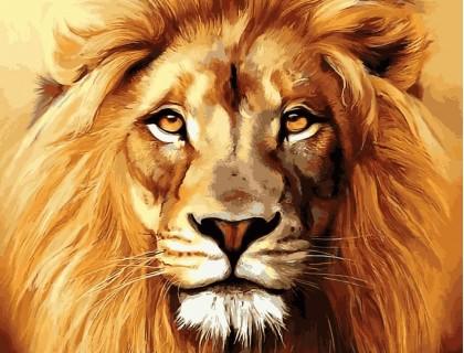 Купить Алмазная вышивка 50 х 40 см на подрамнике Лев - король зверей (арт. TN937)