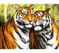 Diamond painting Алмазная вышивка 50 х 40 см на подрамнике Дикие тигры (арт. TN938)