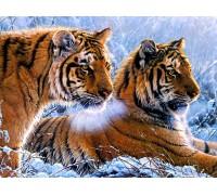 Алмазная вышивка 50 х 40 см на подрамнике Тигры в зимнем лесу (арт. TN939)