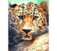 Алмазная вышивка на подрамнике 40 х 50 см Взгляд леопарда (арт. TN947)