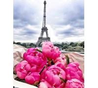 Алмазная вышивка 40 х 50 см на подрамнике Путешествие во Францию, Париж (арт. TN959)