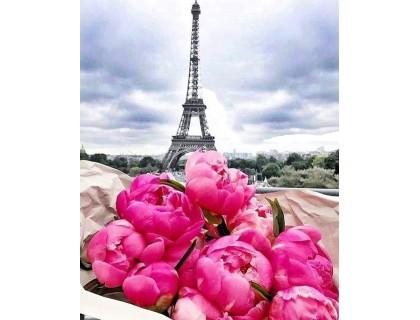 Купить Алмазная вышивка 40 х 50 см на подрамнике Путешествие во Францию, Париж (арт. TN959)