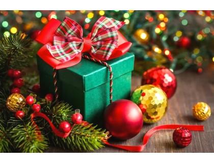 Купить Алмазная вышивка 30 х 20 см на подрамнике Новогодний подарок (арт. TN964) для начинающих